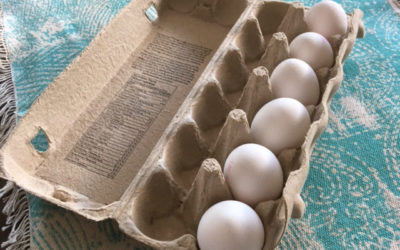 Egg-Carton-Half-Full-Cuts-in-Car-Insurance-2
